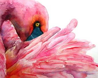 Pink. A3 Print