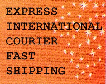 EXPRESS INTERNATIONAL COURIER fast shipping