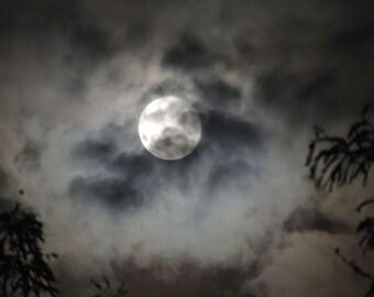 Moon Photograph -  Full Moon -  NY Night Sky - Moonlight - Nature Art - Romantic Night Sky - Rustic Moon Cloud Trees - Nature Photograph