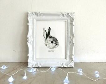 Dwarf Rabbit Print