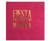 Cinco de Mayo Party Decorations - Cocktail Napkins - Fiesta - Set of 20