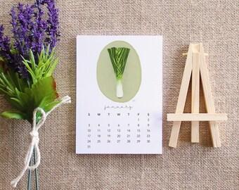 2016 Desk Calendar / Featuring my Vegetables illustrations