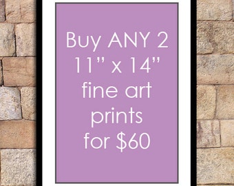 Any 2 - 11x14 prints for this special discounted price - fine art print deal giclee print
