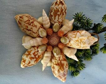 Bat valoute seashell ornament_beach ornaments