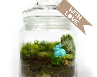 Moss Terrarium // Bunny // Aqua
