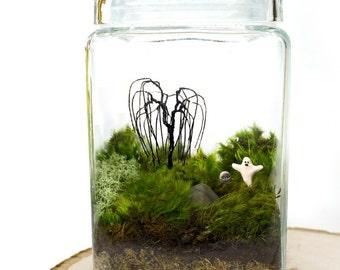 Moss Terrarium // Haunted Graveyard