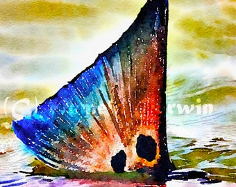 "Redfish tailing print in watercolors: Red Fish with blue tail and 2 spots 11x14"" giclee print, redfish art, redfish watercolors, spottail"