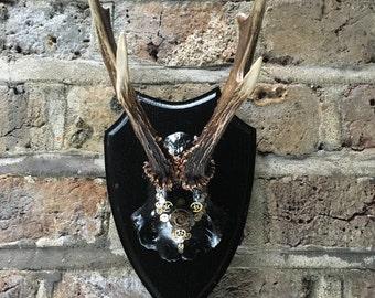 """Steampunk deer antler skull with antlers """"Nintinugga"""""""