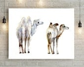 Camel Watercolor Painting - Giclee print Animal Painting - Camel Art - Camel illustration - Aquarelle Camels - Zen drawing