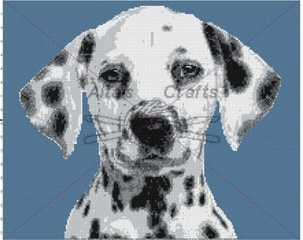 Dalmation Puppy  Blanket Pattern