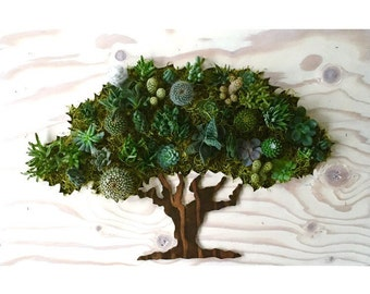 Valentine's Day Gift || CUSTOM COLOR: Large Oak Tree Succulent + Cacti Vertical Garden  // Living Wall // Wall Planter (3' x 2')