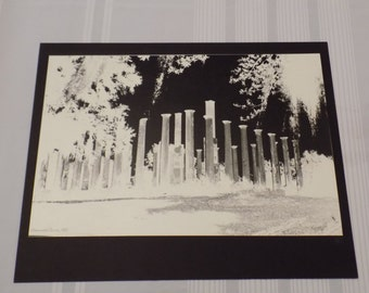 Vintage 1960 Signed 16x19.75 A.E. Woolley Photograph