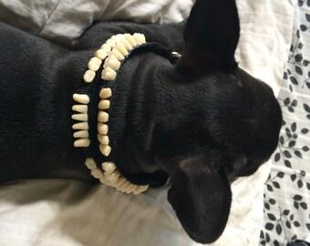 Teeth Dog Collar