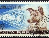 Laika Space Dog -Handmade Framed Postage Stamp Art 12149AM