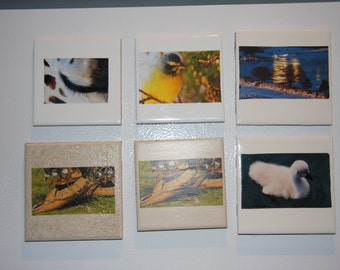 Magnets, fridge magnets, home decor, tile,