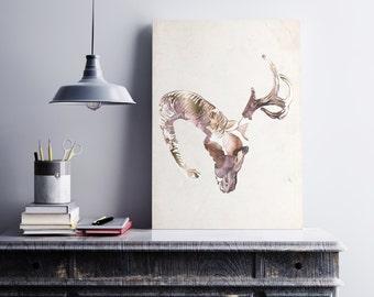 Floral+Gold, Ram+Deer