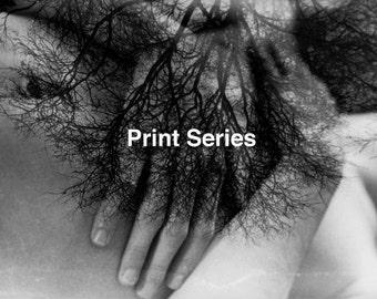3 print 5x7 series