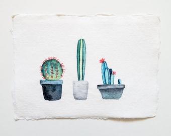 Cactus Trio: Original Watercolour Painting