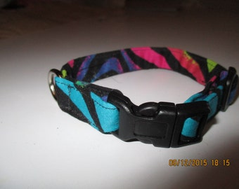 Dog Collar or Cat Collar with name and phone number