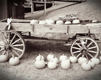 Fall Pumpkin Fine Art Photography, Wagon, Autumn, Sepia