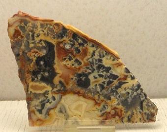 Australia Crazy Lace Agate  Slab Lapiadary Slab Natural Stone Slab