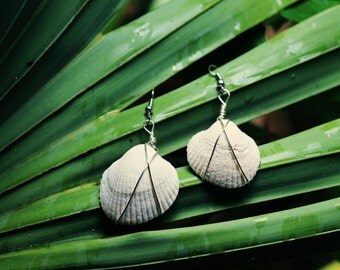 Alabaster Wire Wrapped Bahia Shell Earrings