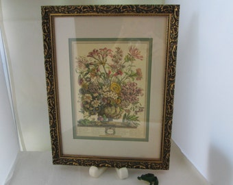 Robert Furber Framed October Flower Print Framed Art Framed Wall Art Furber print Furber October print Furber flower Furber floral