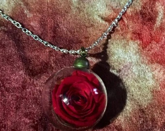 Love Eternal Real Red Rose Necklace
