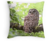 Owl Cushion, Owl Gifts, Owl Decor, Owl Pillow, Woodland Decor, Barred Owl, Nature Decor, Hoot Owl, Nature Cushion, Woodland Pillow, Raptor