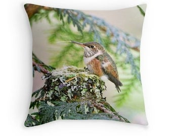 Bird Decor, Hummingbird Pillow, Hummingbird Cushion, Nature Throw Pillow, Wildlife Cushion, Baby Animal Decor, Baby Bird, Cute Cushions