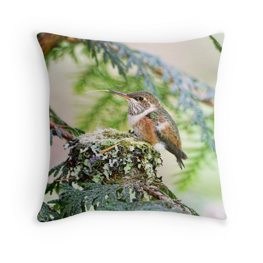 Bird decor hummingbird pillow hummingbird cushion nature for Hummingbird decor