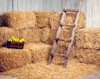 Mow haystack Photography Background,barn Newborn Vinyl Backdrop- Item D6168