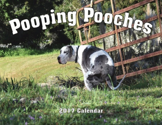 Pooping Pooches 2017 Dog Calendar, White Elephant Gag Gift Exchange or Yankee Swap
