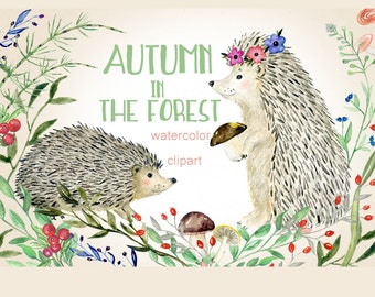 Autumn  in the forest. Watercolor clip art. Hedgehog, mushroom, foliage, ructic
