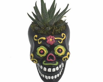 Black Sugar Skull Ceramic Planter with Live Plant - 4.3 x 5 in