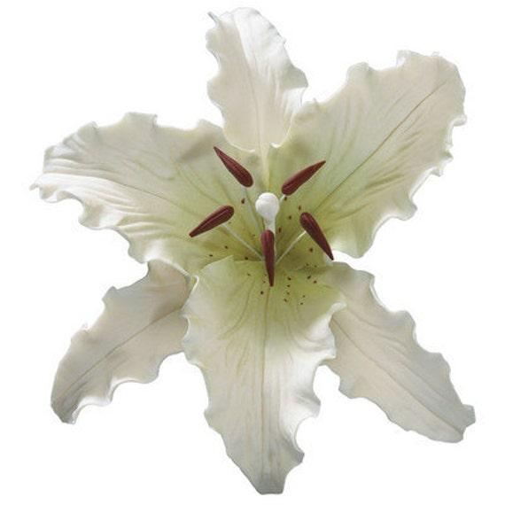 Gum Paste Stargazer weiße Lilie-essbaren Blumen essbare große
