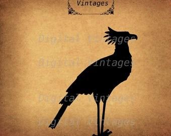 Secretary Bird nimal Silhouette Black Illustration Digital Image Graphic Download Printable Clip Art Prints 300dpi svg jpg png
