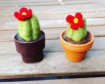 Needle felted cacti in pot