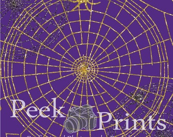 4ft.x4ft. NOT Afraid of Spiders- Glitter Spider Web Vinyl Photography Backdrop - Fall Halloween Backdrop- Background