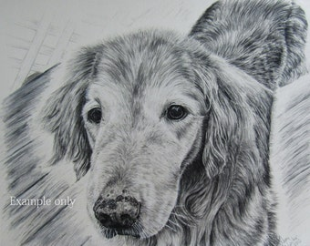 Custom made charcoal drawing-11x14-EXAMPLE ONLY