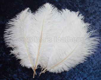 """8 Grade A 12-14"""" Snow White Ostrich Drab Plume Feathers Wedding, Millinery, NEW S-21"""
