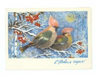 Happy New Year, Birds, Christmas, Illustration, Used Postcard, Soviet Vintage Postcard, Manilova, USSR, 1975