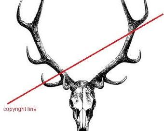 Deer skull - temporary tattoo