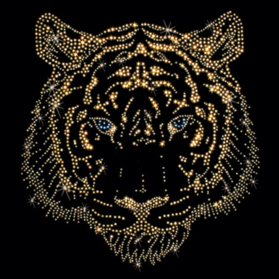 Items Similar To Sequins Of A Tiger On Etsy