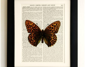 FRAMED ART PRINT on old antique book page - Big Brown Butterfly, Insects, Vintage Upcycled Wall Art Print Encyclopaedia Dictionary Page