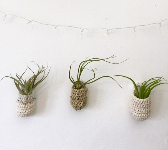 Three Air Plant Wall Baskets With Handles Mixed By