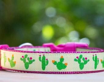 Pink Cactus Dog Collar / Desert Dog Collar / XS- XL / Australian Made