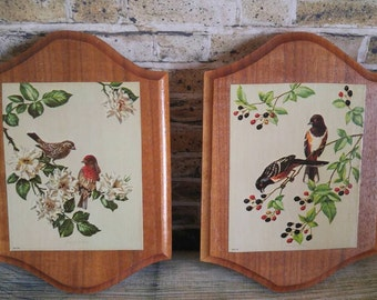 Vintage Wall Art Birds on Wood Plaques, Robin, Sparrow, Trees and Berries; Set of 2