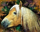 ART WATERCOLOR PALOMINO Horse Digital Print Home and Living Decor Wall art Instant Download Farm Animal Abstract Background 8x10 300 Dpi Jpg