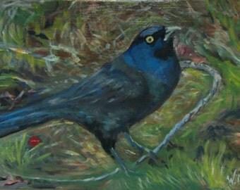 Autumn Grackle acrylic bird painting Original